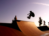 skate the board