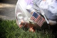 American trash 2