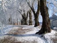 Winter in Kalmar, Sweden 1