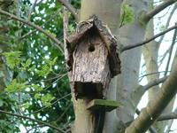 broken birdbox