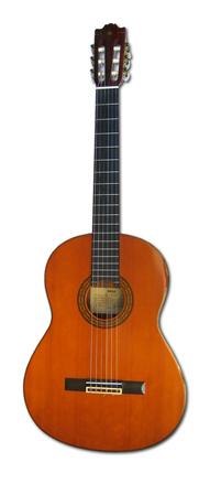Gonnie's Guitar