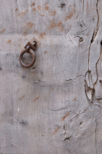 Door from days gone by 3