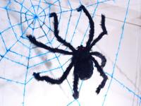Wool spider