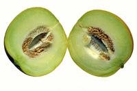 Melon serie 2