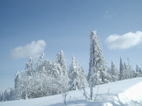 winter in mountains 7