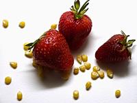 Popcorn Strawberry 1