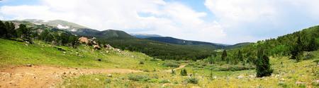 Meadow in the Rockies
