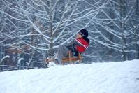 Boy on the sledge 5