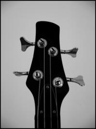 Basshead