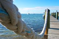 Winter in Key Largo