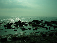 Coast at scheveningen