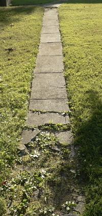 ( Broken sidewalk )