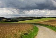 Ardennes 1