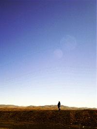 chilean desert 2