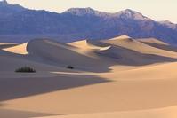 Mesquito Sanddunes Death Valley