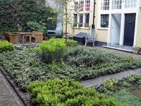 Amsterdam gardens