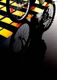 Bicycle,Contrast,Colour,Rain,Reflex,Sport
