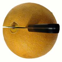 Melon serie 20