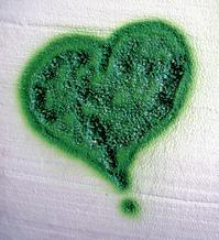Airbrush Heart