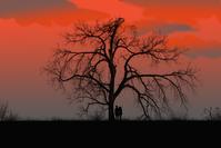 a beautiful scene of a sunset