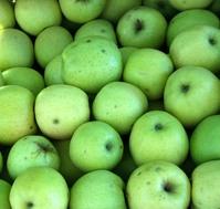 Apples - Pommes vertes