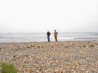 Gazing on the beach