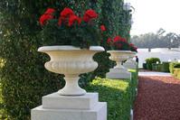 Bahai garden 10