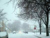 Snow Storm 5