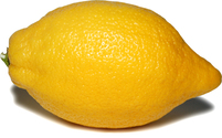 isolated lemon 1