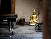 Glint of Hope - Hidden Buddha