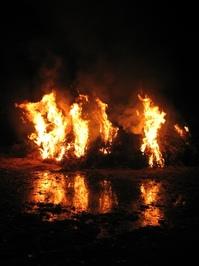 Fir fire 1