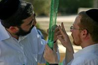 Jewish tradition 13