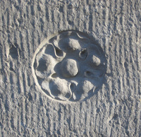 Rosette carved in stone 2