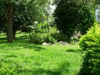 Garden Park 2