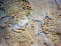 maya wall