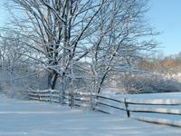 Praire Snow