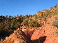 sedona landscapes 5