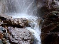 Deluge 3