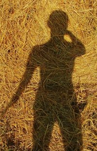 Shadow on a Hay