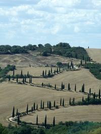 Toscana lanscape 4