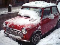 Mini in the snow