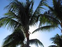 Bahamas 2