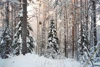 finland 4