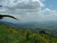 Assisi Landscapes 3