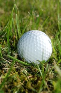golf_0 2