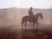 australian cowboy life