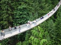 suspension bridge 2