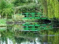 Bridge at the Water Garden
