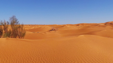 sahara desert 4