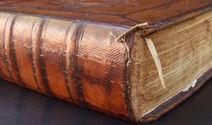 old Dutch Bible 4